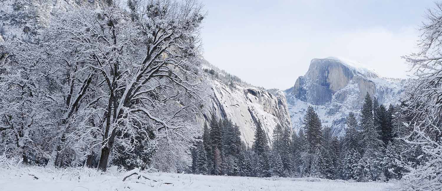 Enjoy Spectacular Winter Of Yosemite