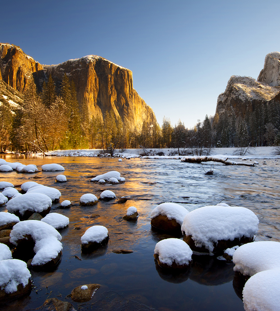 Enjoy the Spectacular Scenery of Yosemite